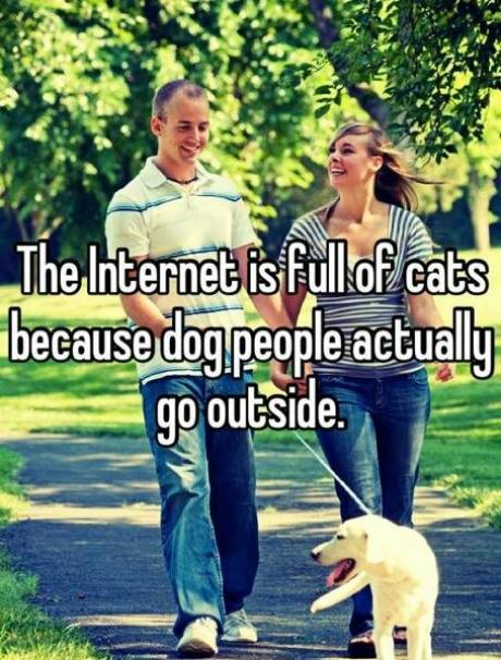 The Internet is full of cats because dog people actually go outside.