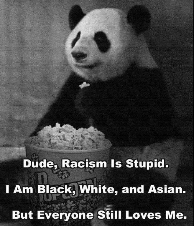 Dude, racism is stupid. I am black, white, and Asian. But everyone still loves me.