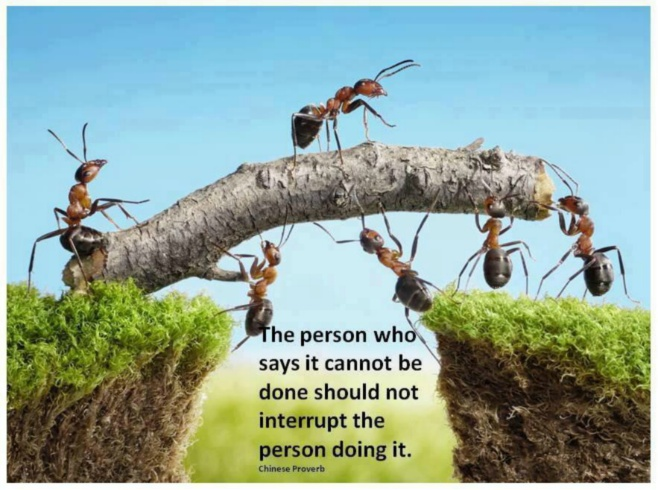 Chinese Proverb - The person who says it cannot be done should not interrupt the person doing it
