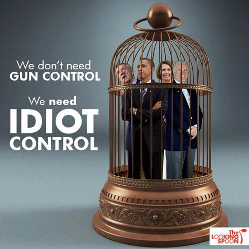 We don't need GunControl. We need IDIOT Control!