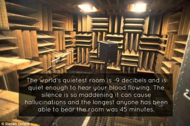 World S Quietest Room Hallucinations