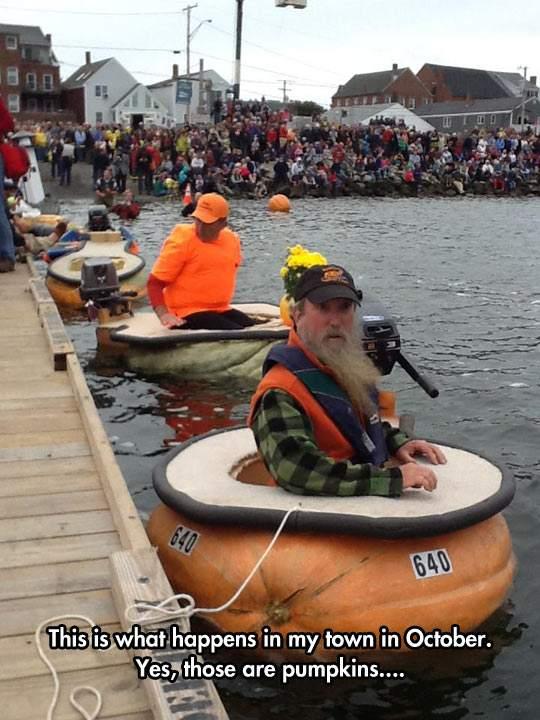 The pumpkin boats contest in Oregon