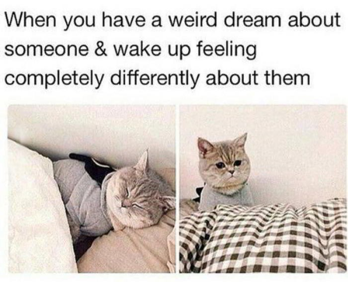 When you have a weird dream about someone