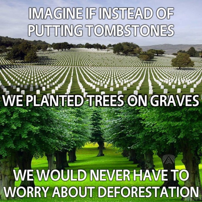 Imagine If Instead Of Putting Tombstones We Planted Trees On Graves