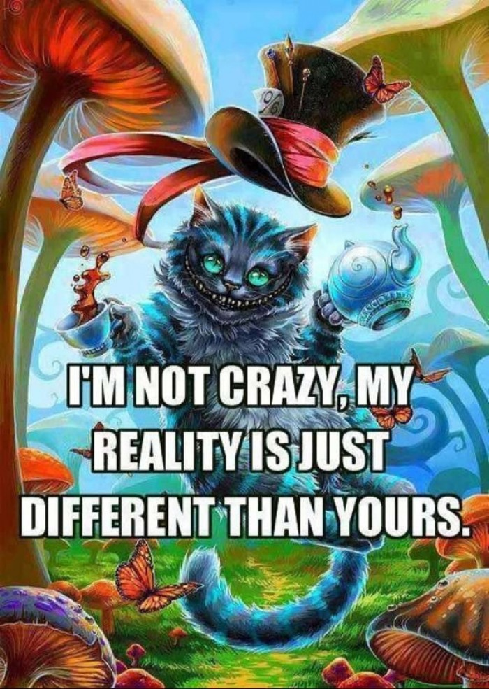I'm not crazy. My reality is...