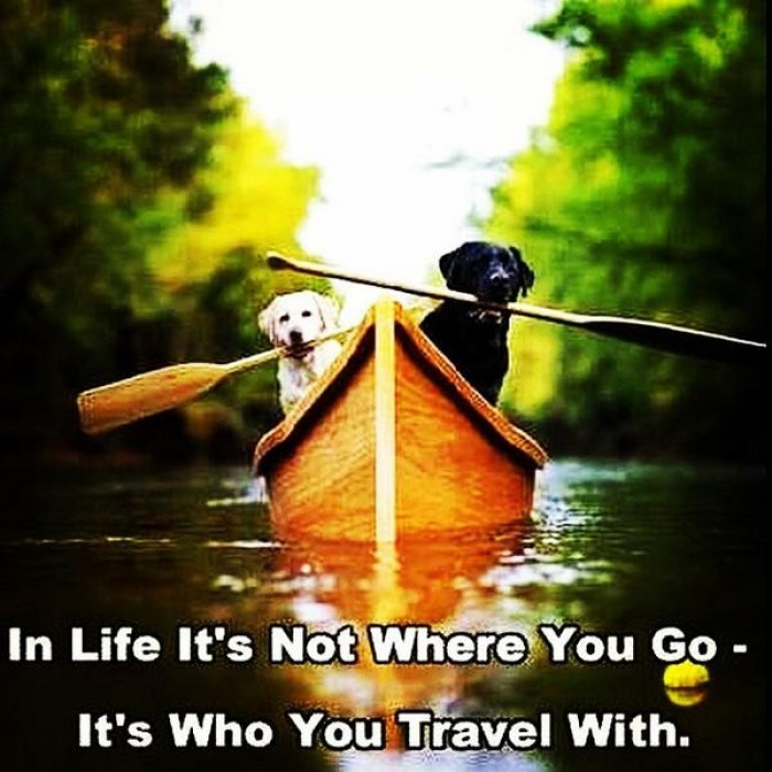 In life it's not where you go it's who you travel with