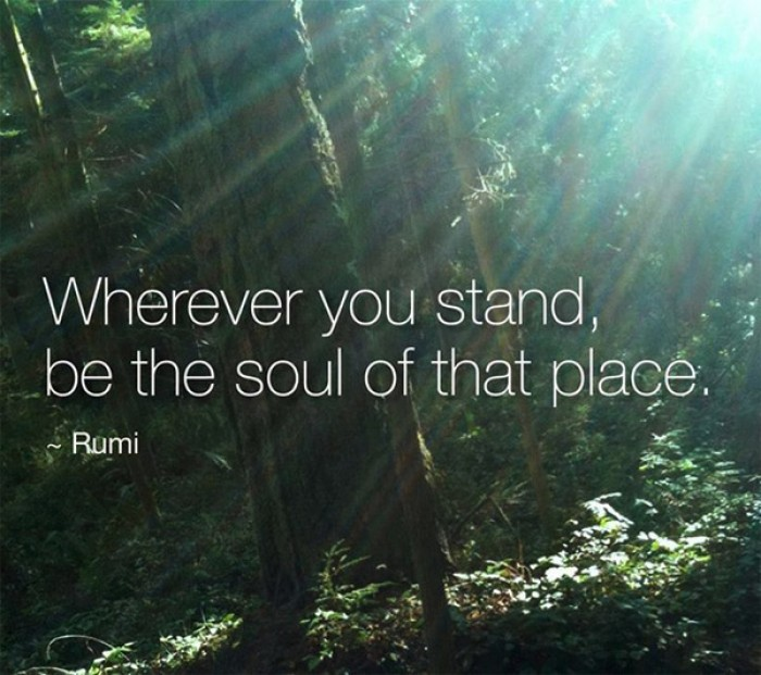 Rumi - Wherever you stand, be the soul of that place.