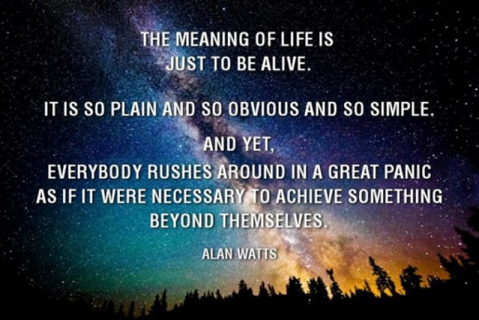 The meaning of life is jut to be alive.. - Alan Watts Quote