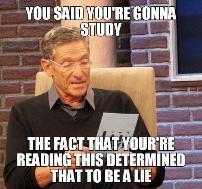 You said you're gonna study