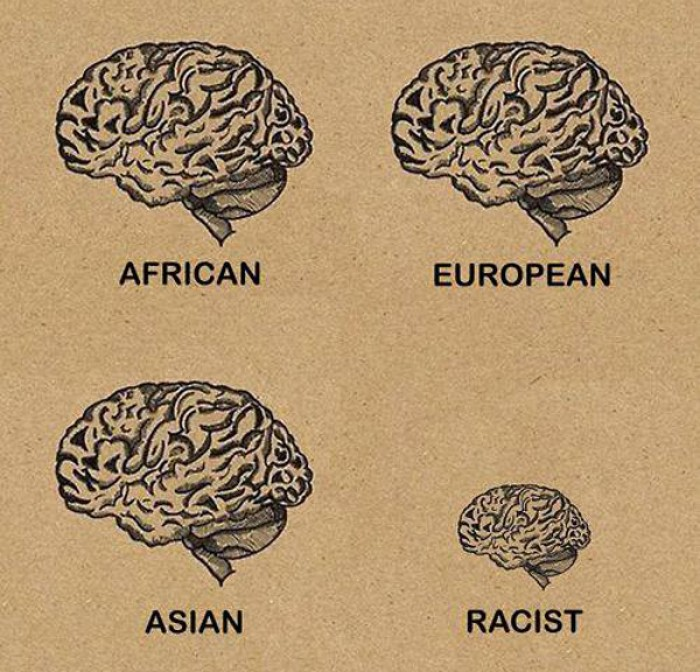 Brain Size by Race