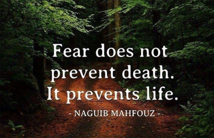 Naguib Mahfouz - Fear does not prevent death, it prevents life