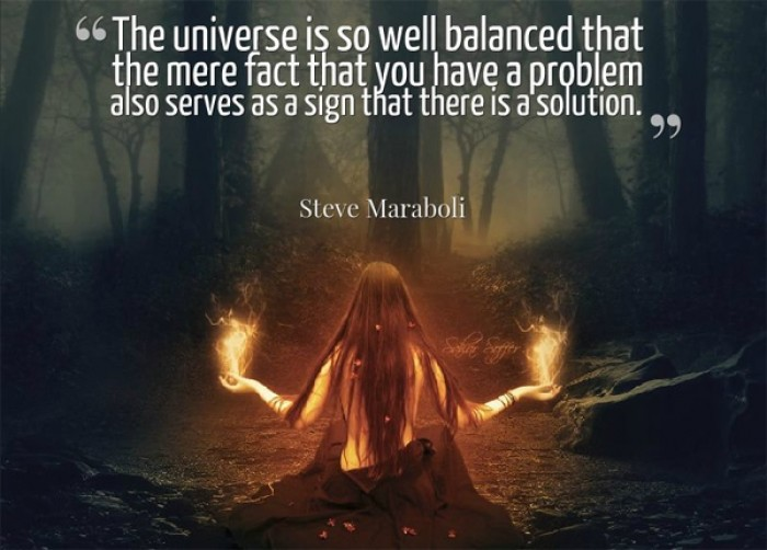 Steve Maraboli - The universe is so well balanced that the mere fact that you have a problem...