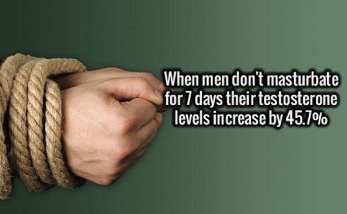When men don't masturbate for 7 days their testosterone levels...