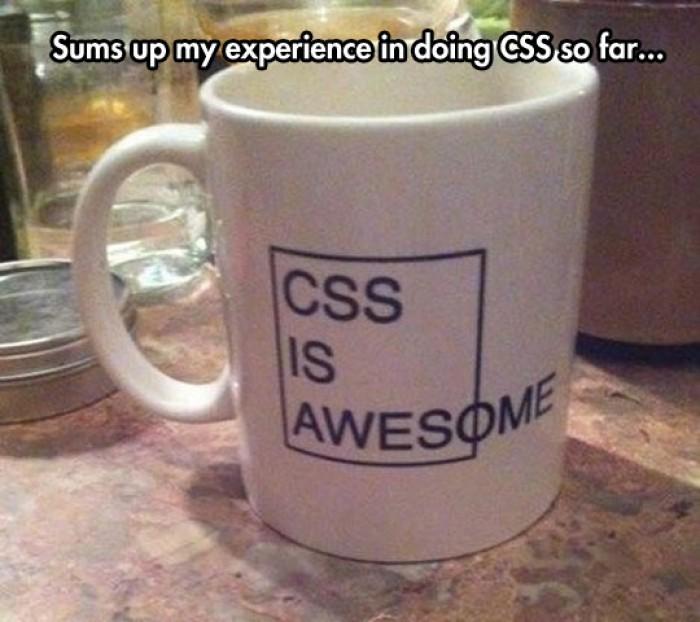 CSS is awesome funny mug