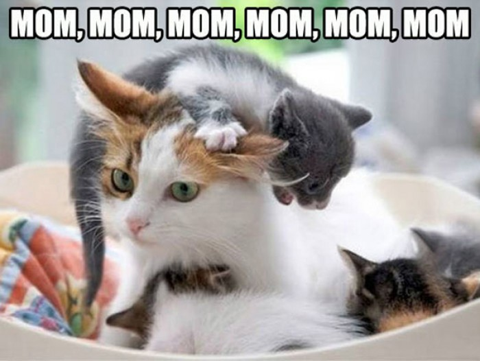 Mom, mom, mom, mom, mom... Kids can be annoying sometimes