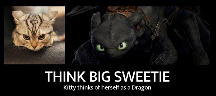 Kitty thinks of herself as a Dragon