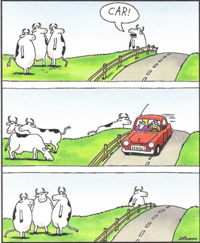 Gary Larson's cows