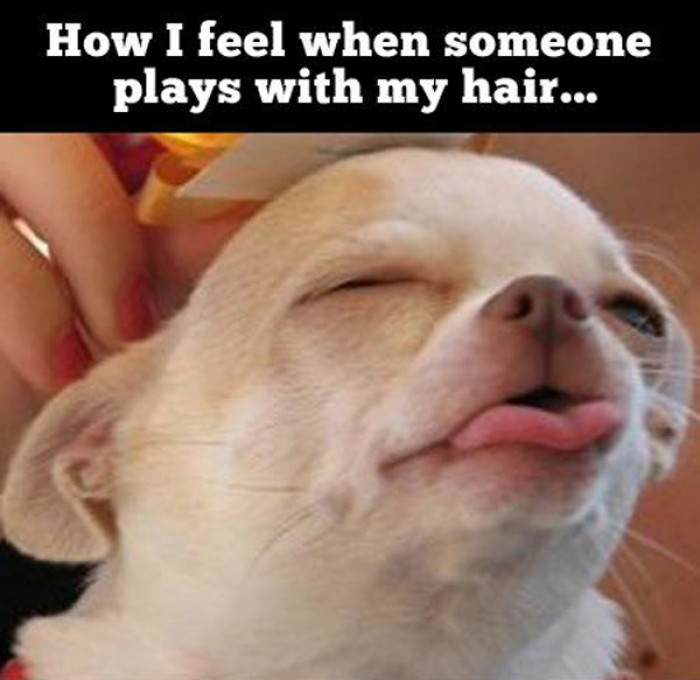 How I feel when someone plays with my hair