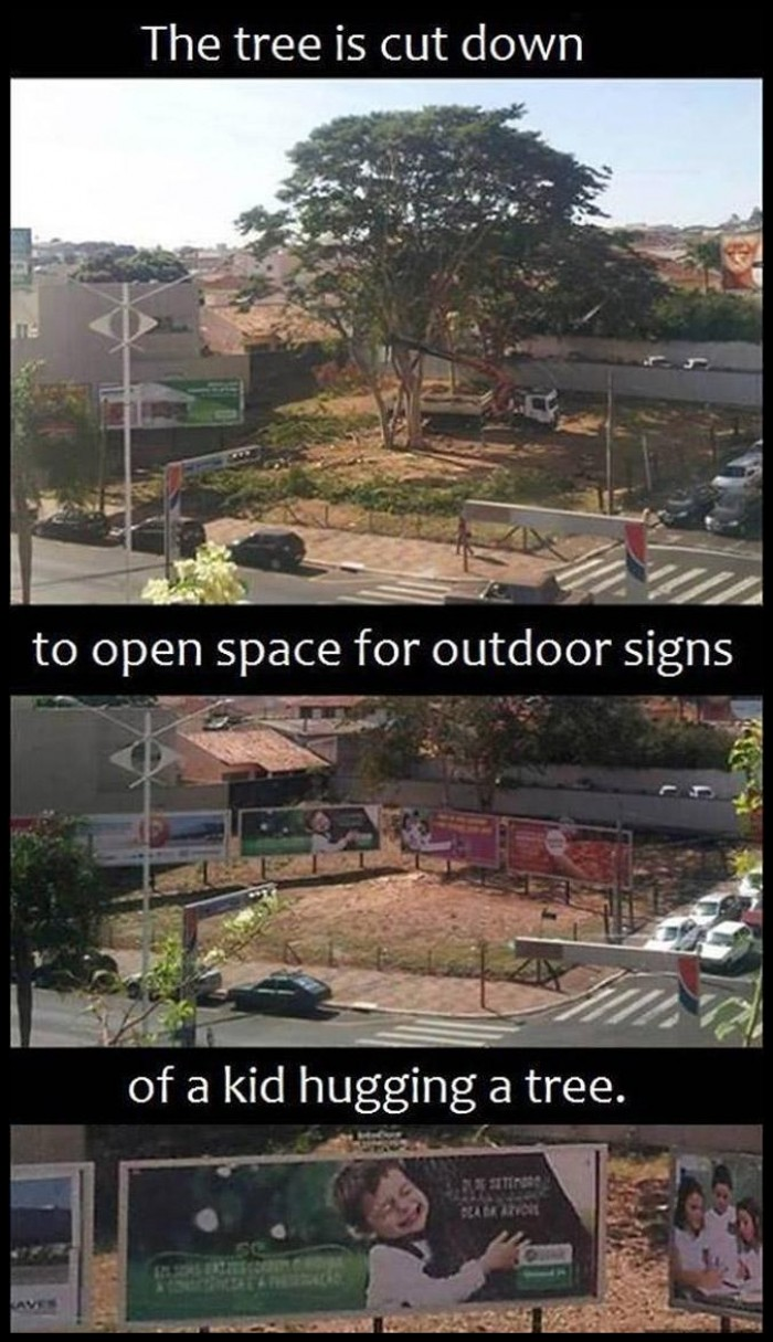 Removing the tree to open space for outdoor signs that shoving a kid hugging a tree