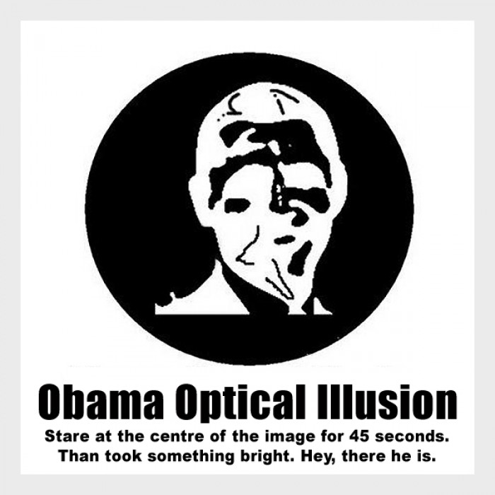 Obama Optical Illusion