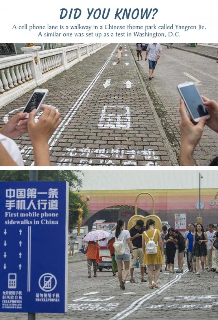 A cell phone walking lane