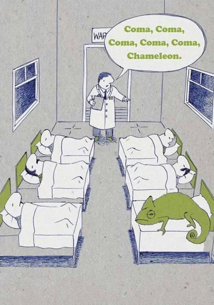 Hospital Coma Department - Coma, Chameleon