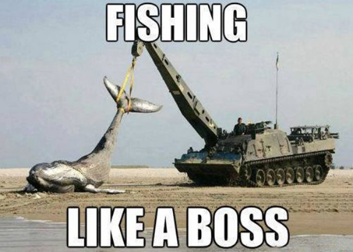 Fishing like a boss with tank!