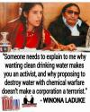 Winona Laduke - Someone needs to explain to me why wanting clean drinking water...